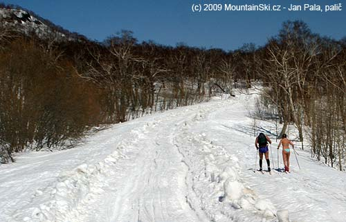 Cross-country skiers next to snow road