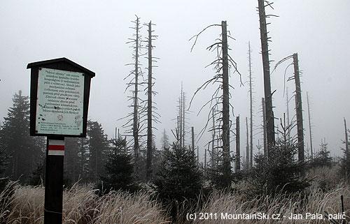 Vmrtvém lese na celkem ostrém hřebenu potkáte tuto vtipnou ceduli, pro zájemce její obsah přepíšu