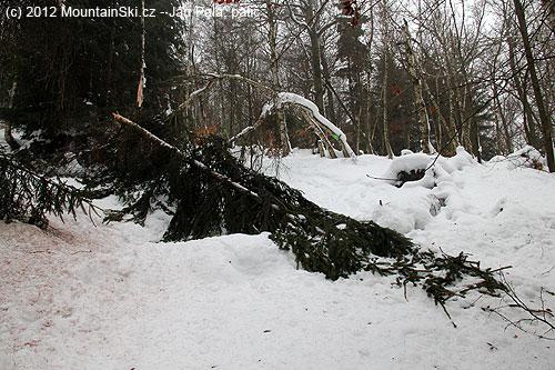 Mikulovská– další padlý strom zapříčinal mírnou variantu výstupovétrasy