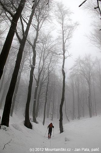 Pivošův pytel sjezd– krásné stoupání lesem