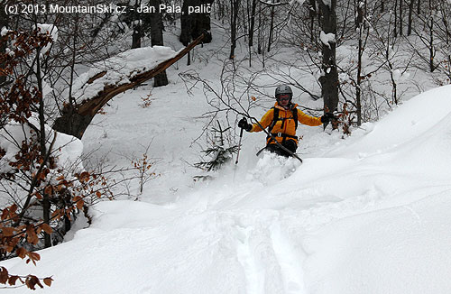 Simona skiing through the forest overfilled with the powder snow