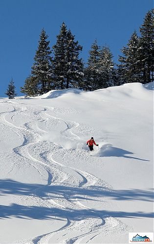 Trace by trace, that's the proper way of freeride skiing