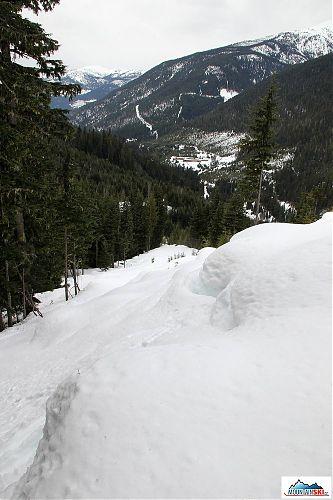 Pohled zpátky z výstupu pasekou, v dolině je CMH Galena lodge