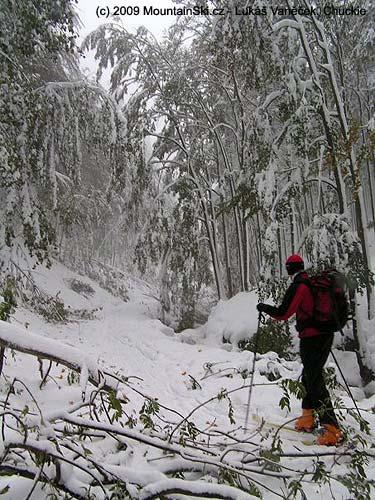 Ani vítr ani sníh ani padající stromy nás nezastavily
