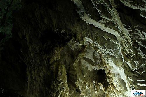 Jako v mnoha jiných jeskyních je i tady spousta netopýrů