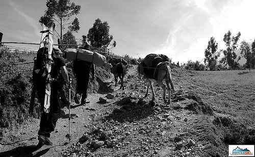 Karavana putující do základního tábora pod Nevado Copa