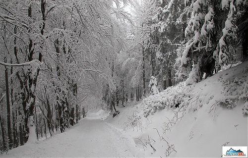 Sněhová nádhera v neděli dopoledne
