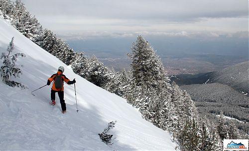 Je libo lyžování v kosodřevině a lese? Bansko nabízí spoustu možností...