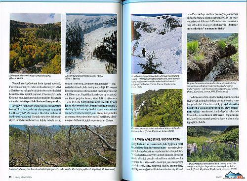 REPRO: (c) www.krnap.cz Nebýt lavin, neexistovala by ani jedna z krkonošských botanických zahrádek...