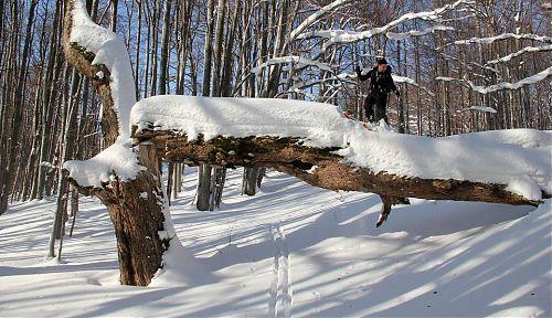 Volné lyžařské terény v České republice