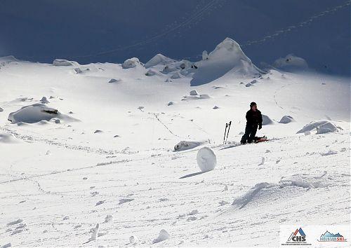 Ropák ve Velké Studené dolině v roce 2011