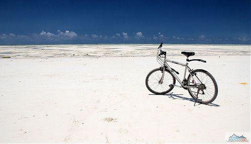 Na tomto horském kole jsem dojel necelých 50 km ze Stone town do Paje...