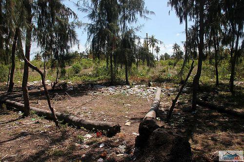 Pěkné smetiště těsně vedle pláže v Paje