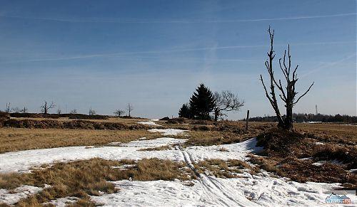 Kousek od hranic s Německem bylo na Cínovci sněhu málo