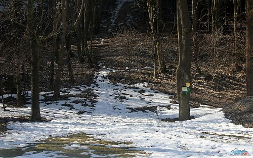 Výstupová skialpinistická trasa Mikulovská byla v polovině února pokrytá spoustou sněhu