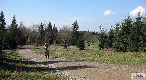 Krušné hory jsou přeplněné prázdnými lesními cestami