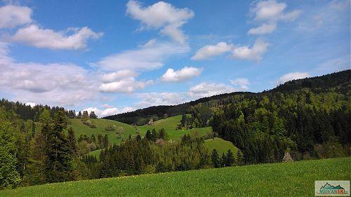 Výhled na sever do údolí potoka Vranča z cesty na Kohútku