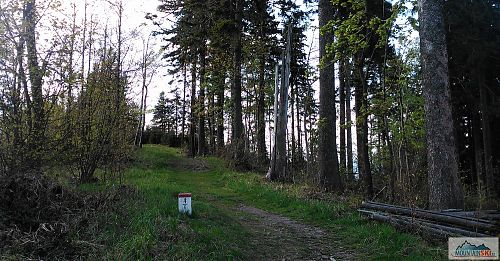 Hraniční hřeben Javorníků je na mnoha místech ideální pro kolo