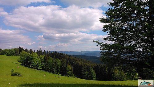 Na Pálenici - na protěšjím hřebenu je patrné lyžařské středisko Kasárna na Javorníkách