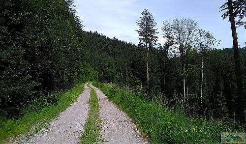 Okružní vyhlídková trasa na Bobek