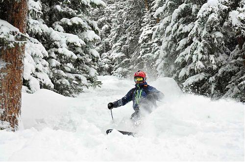 Nevyhýbáme se ani vzrostlým lesním porostům, foto: SNOWfest 2018