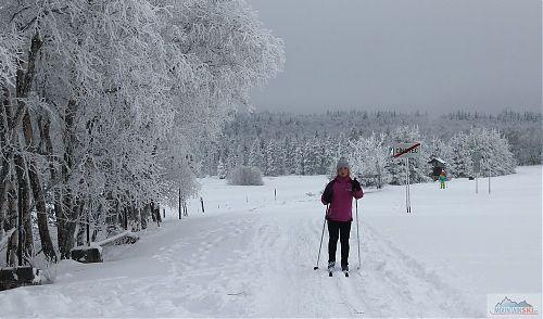 Dojíždím zpátky na Cínovec